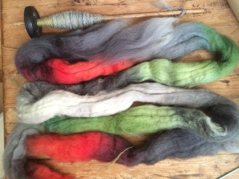 Lucky Adelaide, BFL commercial top from Three Waters Farm.